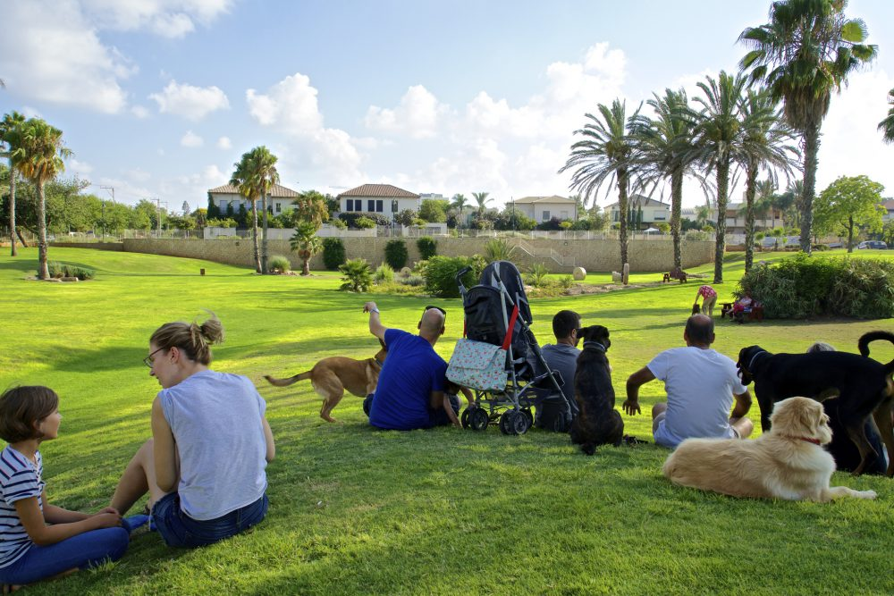 Herzliya Pituach, Israel - July 19, 2014: Dog owners in Wingate Dog Park, Herzliya Pituach, enjoying a quiet afternoon with their dogs.